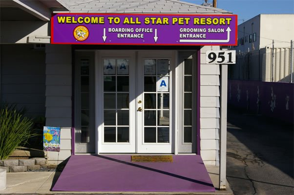 The Search For Excellent Pet Boarding Options