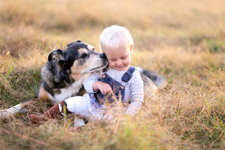 You're Guide to Choosing the Best Kid-Friendly Dog