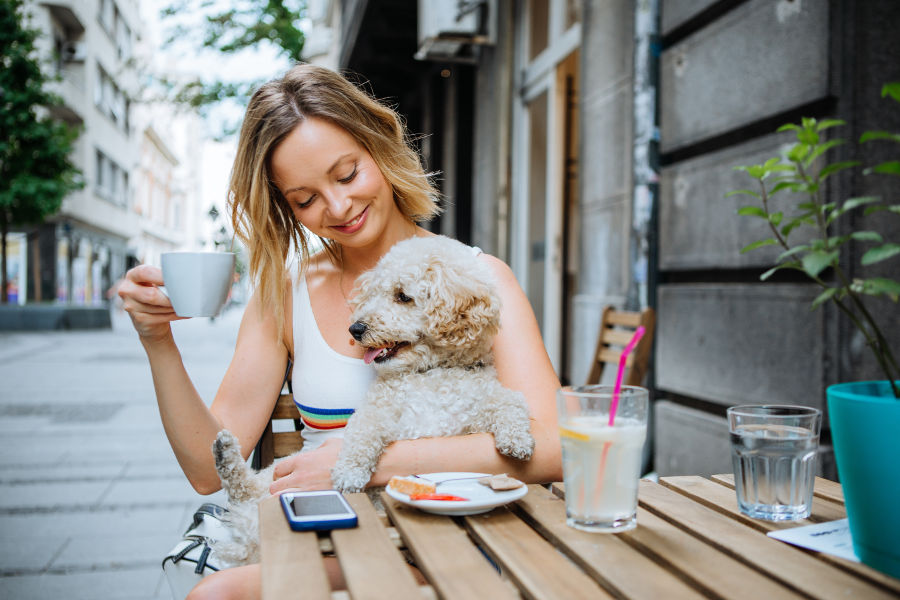 pet-friendly restaurants and bars