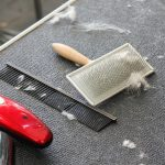 Essential Dog Grooming Tools All Dog Owners Need To Own