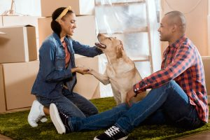 Moving? Tips To Help Keep Your Pets Calm