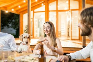 Preparing Your Furry Friend For Holiday Pet Boarding Arrangements